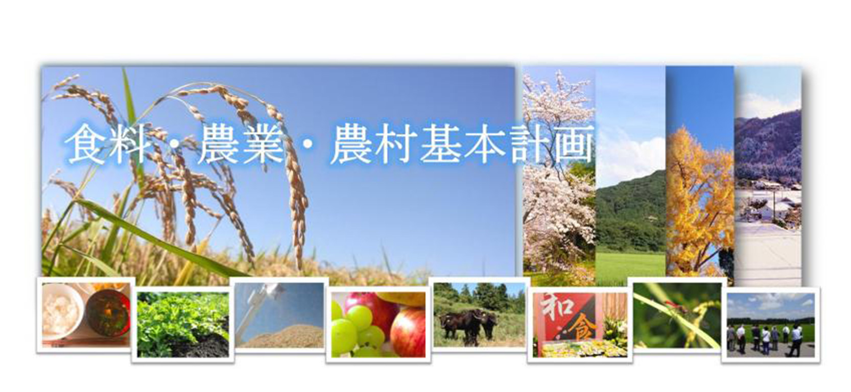 農林水産省「食料・農業・農村基本計画」