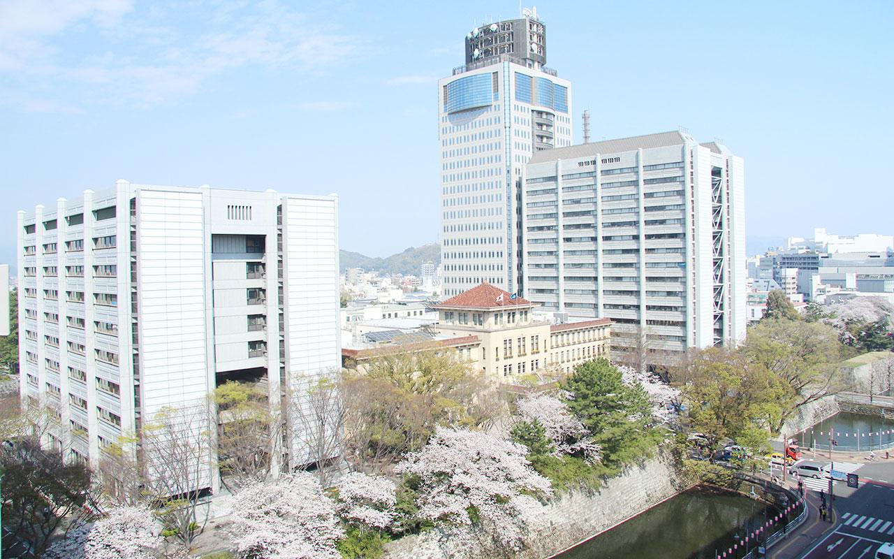shizuoka_22